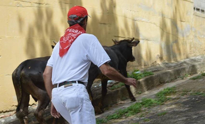 Caracasen Iruñean bezalatsu...