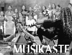 Musikaste 2008ko afitxa