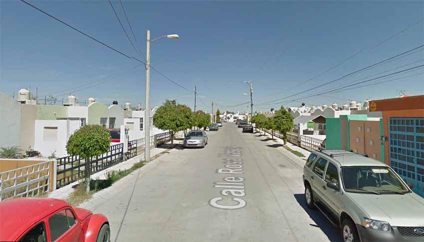 Rosa Vasca San Luis Potosi (Google Maps)